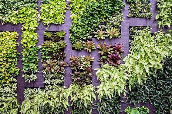 vertical garden sourcing ET2C Int procurement