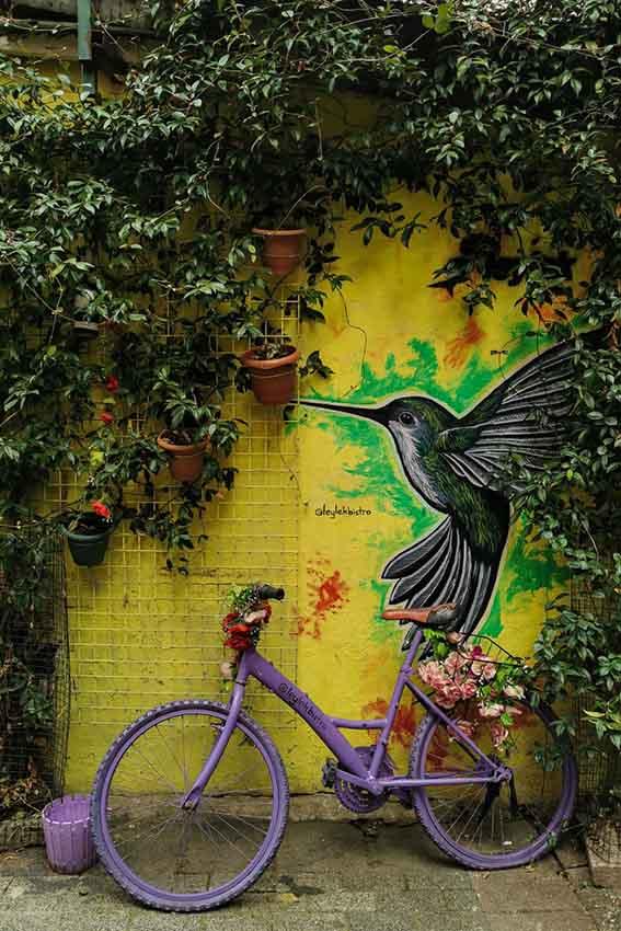 Urban industrial jungle style design garden bicycle purple