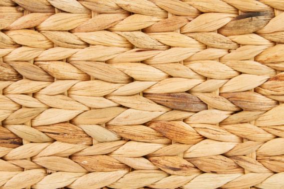 water hyacinth fiber